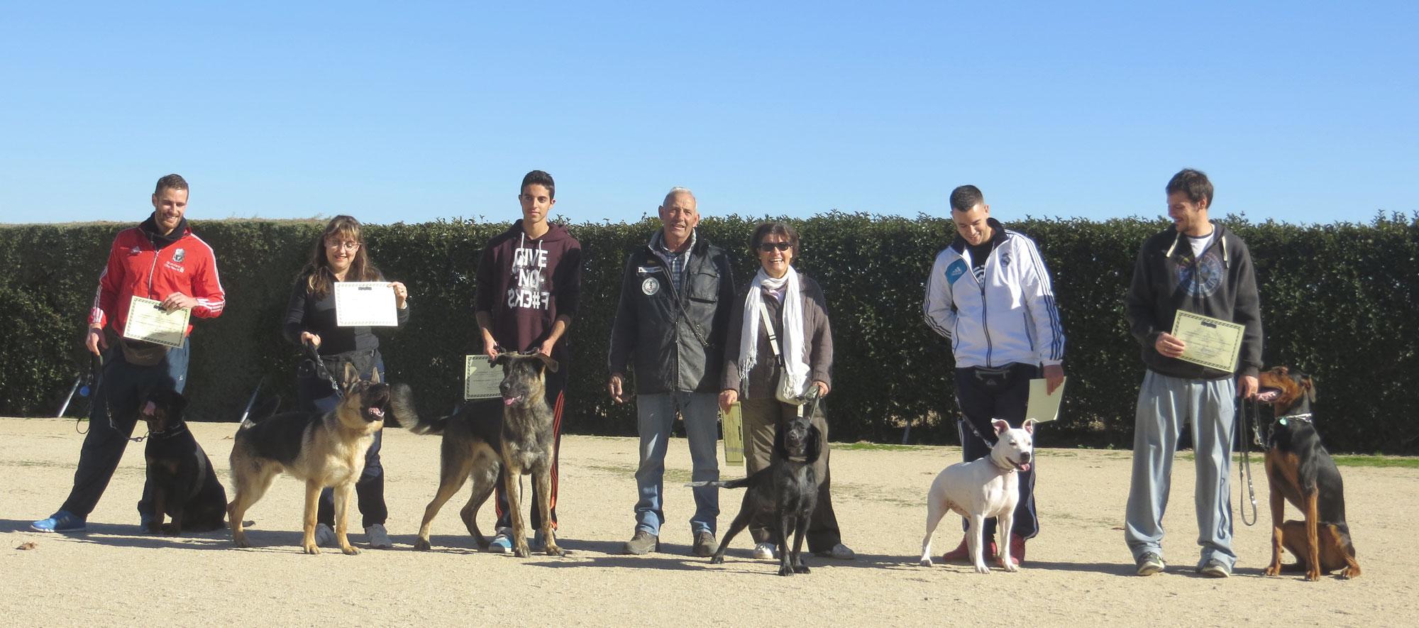 Centro de adiestramiento de perros