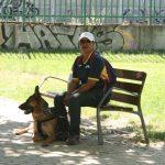 pruebas oficiales de la Real Sociedad Canina Española